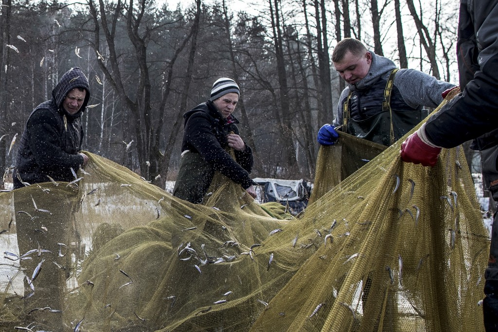 In this photo taken on Saturday, Feb. 9, 2019, fishermen pull out a net with catch during a traditional winter smelt fish festival on Lusiai lake some...