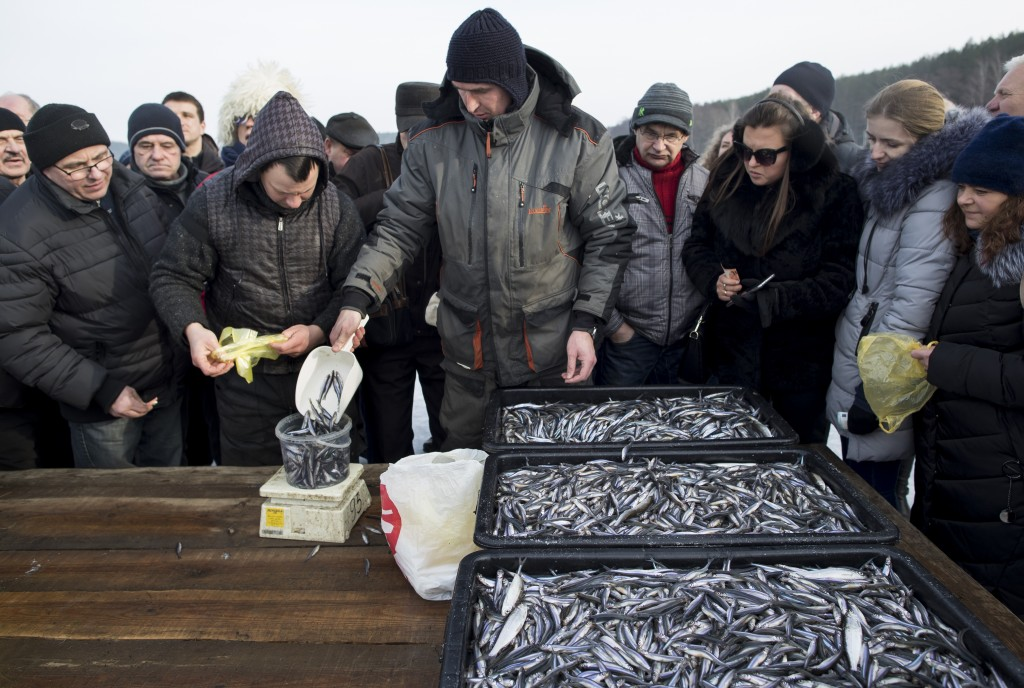 In this photo taken on Saturday, Feb. 9, 2019, a fisherman sells a freshly caught smelt during a traditional winter smelt fish festival on Lusiai lake...
