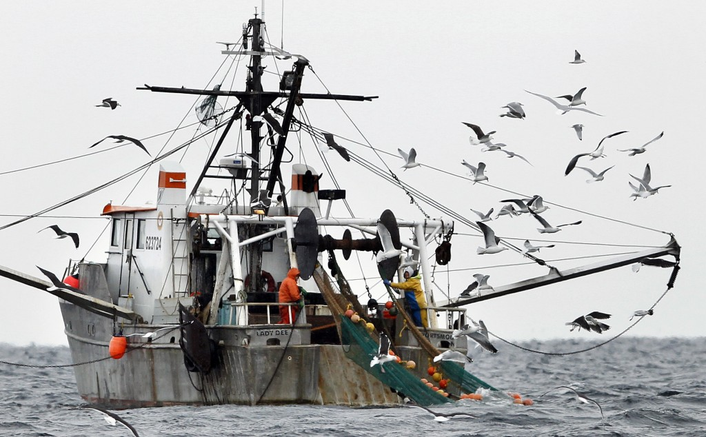 FILE-In this Jan. 6, 2012 file photo, gulls follow a shrimp fishing boat as crewmen haul in their catch in the Gulf of Maine. The state's historic shr