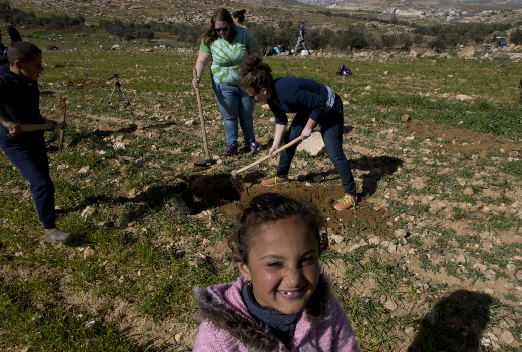 In this Friday, Jan. 25, 2019 photo, American rabbinical students plant olive trees, near the West Bank village of Attuwani, south of Hebron. The stud
