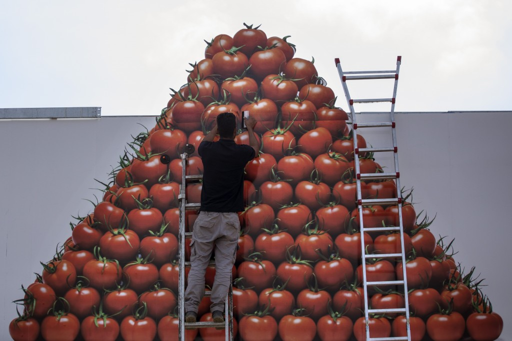 In this Friday, March 1, 2019 photo, a worker sets a banner of tomatoes as part of an advertising, near Almería city, in the autonomous community of A...