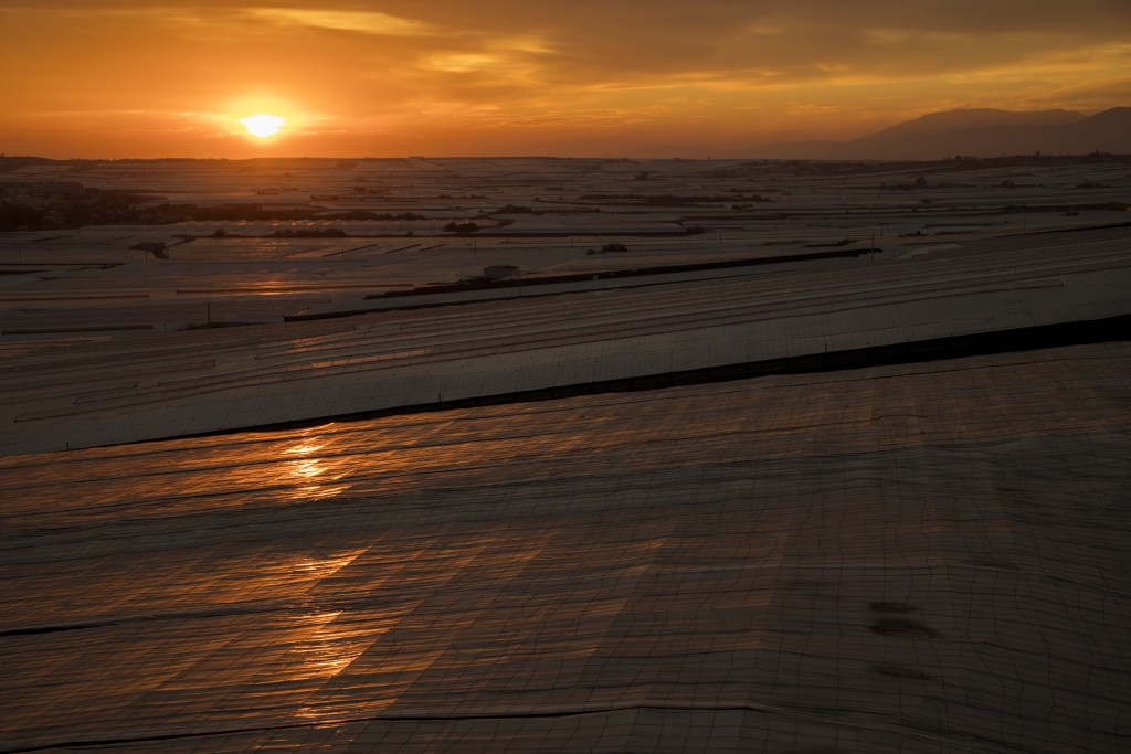 "In this Friday, March 1, 2019 photo, the sun sets over greenhouses known as ""Sea of Plastic"" in El Ejido, a municipality of Almería province, in the a..."