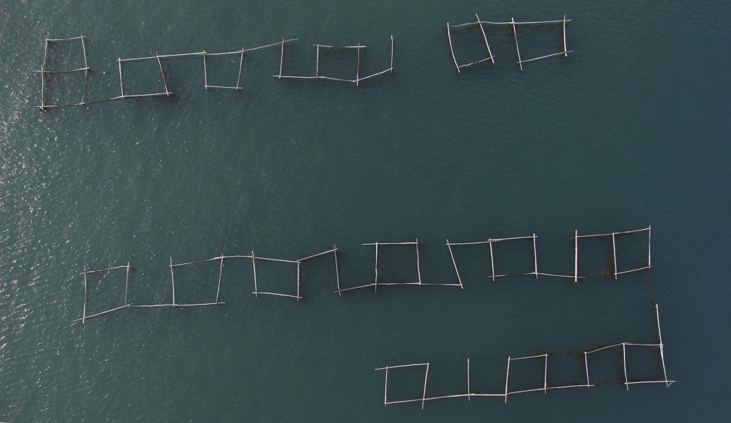 This Friday, March 8, 2019 aerial photo shows an oyster farm in Mali Ston, southern Croatia. Authorities have detected norovirus, a bug that causes di...