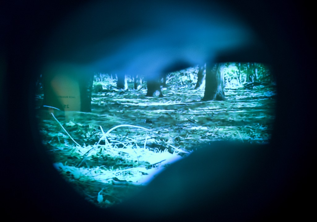 This Tuesday, March 12, 2019 photo shows what a dog's vision is inside an immersive experience showing how dogs see at the California Science Center i