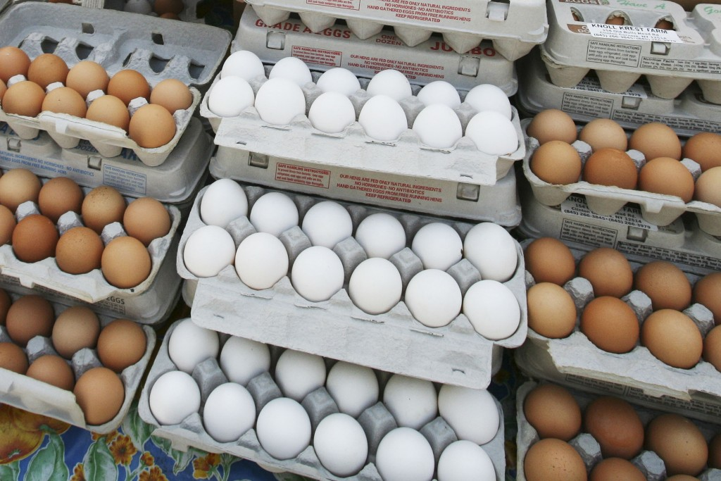 FILE - In this May 14, 2008 file photo, cartons of eggs are displayed for sale in the Union Square green market in New York. The latest U.S. research
