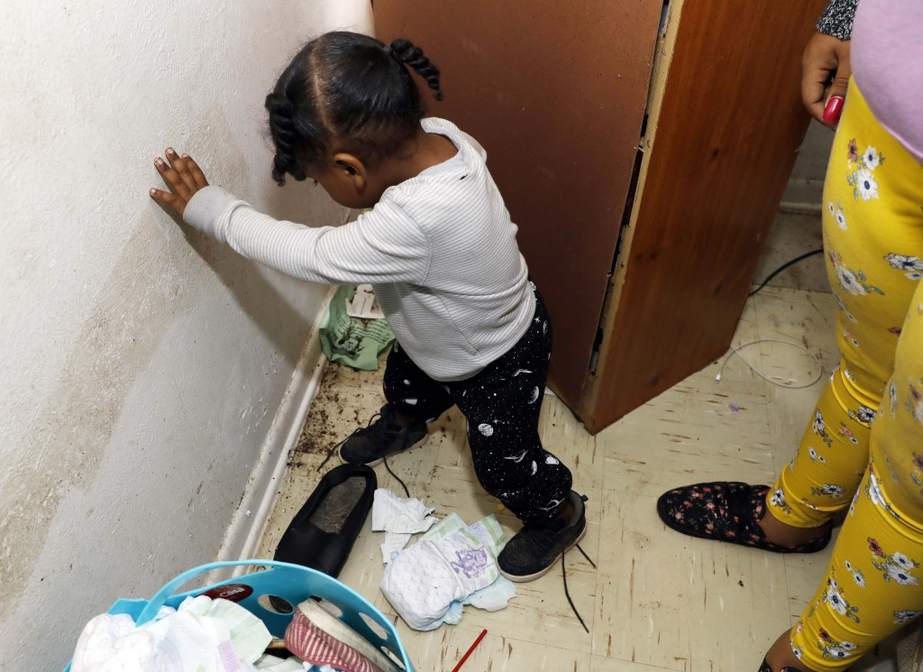 In this Feb. 20, 2019 photo, Destiny Johnson's son, Hayden Howard, 2, steps on roaches in his mother's apartment in Cedarhurst Homes, a federally subs...