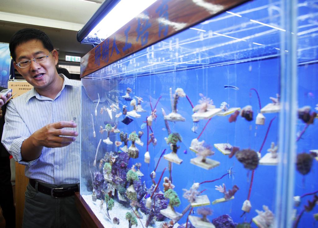 國立海洋生物博物館7日與美國芝加哥雪德水族館簽署交流合作備忘錄,兩館交流海洋生物展示、照顧技術、學術研究等。圖為海生館珊瑚人工培育成果。中...