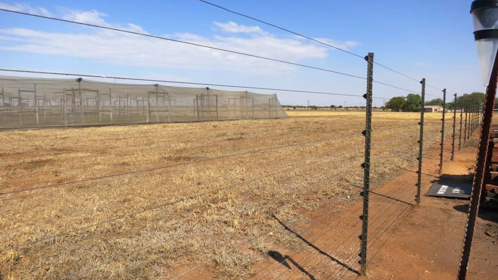 基改食品對非洲糧荒非萬靈丹,農場主人雷魯以圍欄區分住家與農場。中央社記者徐梅玉約翰尼斯堡傳真 104年6月27日