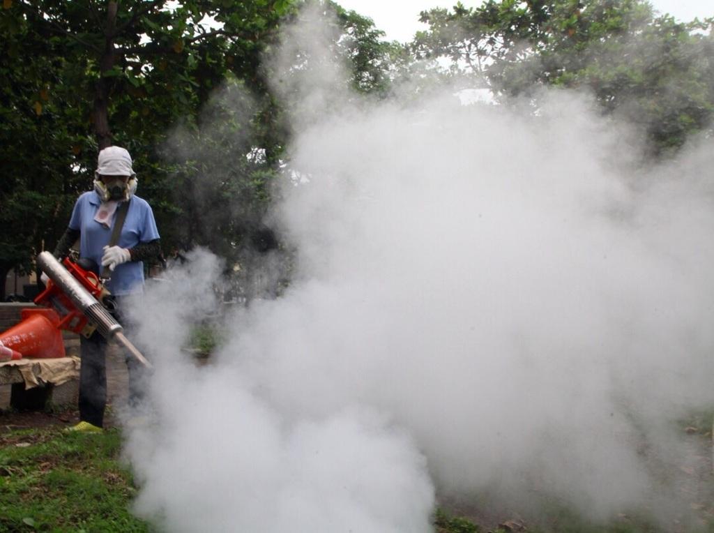 Dengue fever death toll reaches 42