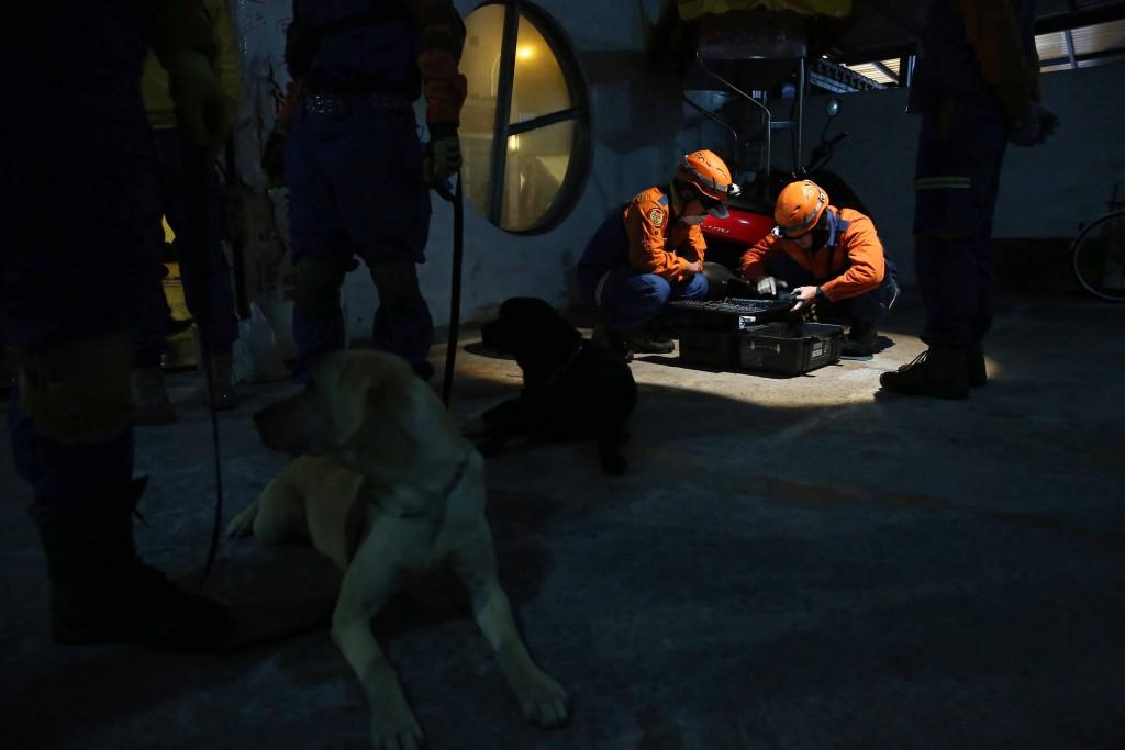 花蓮地震搜救工作動員生命探測器及搜救犬