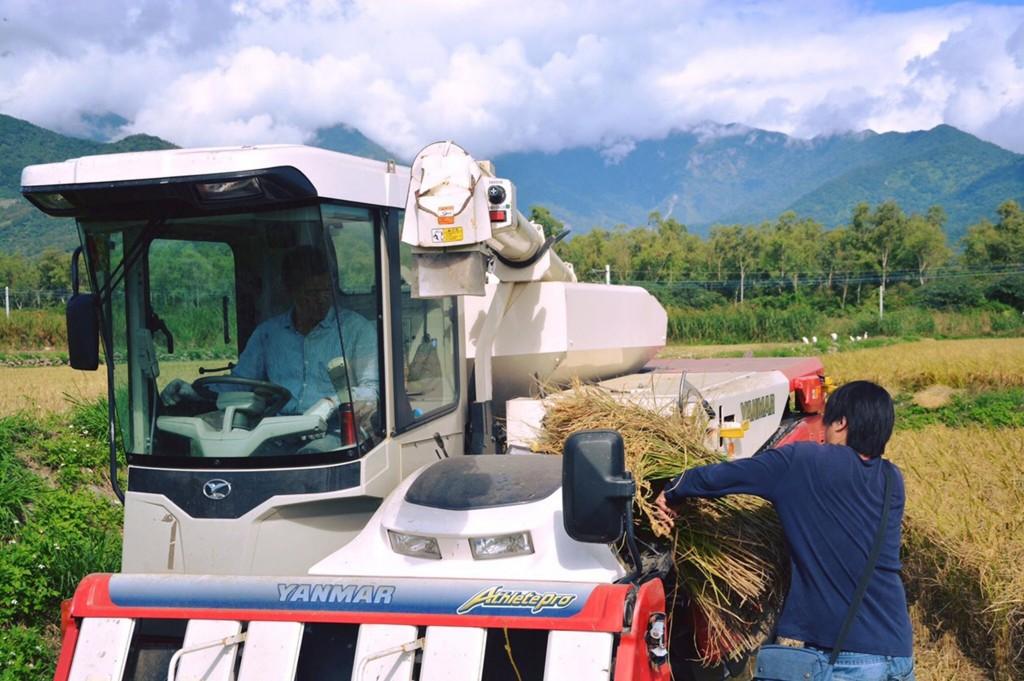 台灣奧丁丁集團與台東池上青農合作,將區塊鏈與物聯網技術導入稻作(圖:魏瑞廷提供)