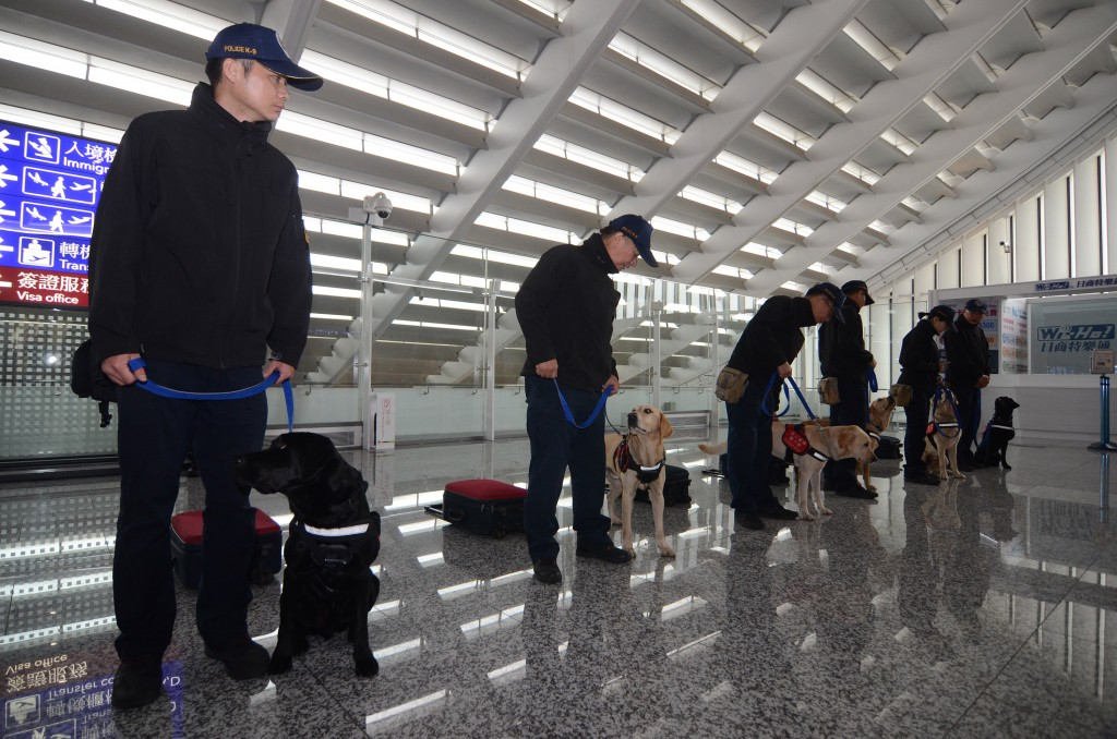 Customs officials with detection canines at Taoyuan International Airport