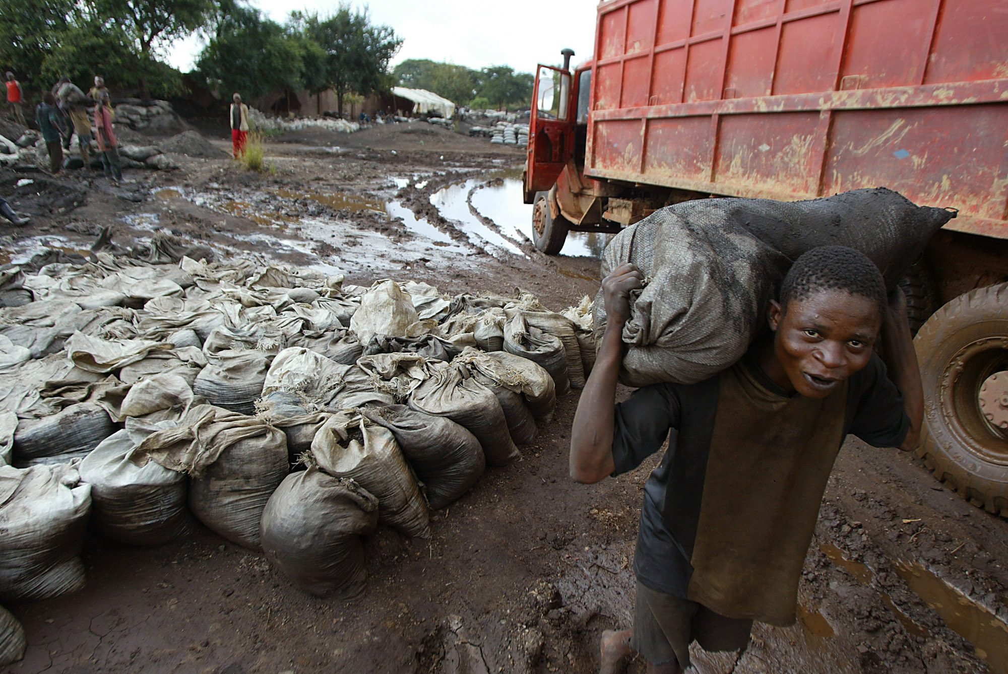 In this April 2004 file photo, a young man carries wet Cobalt on his back at the Shinkolobwe Cobalt mine, situated 35km from the town of Likasi, in th...