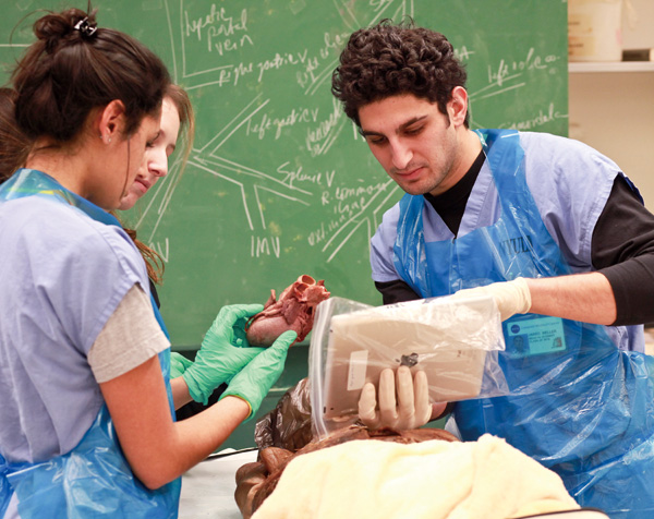 A medical use an iPad, containing the course curriculum, during an anatomy class at the New York University School of Medicine in New York, Dec. 19, 2...
