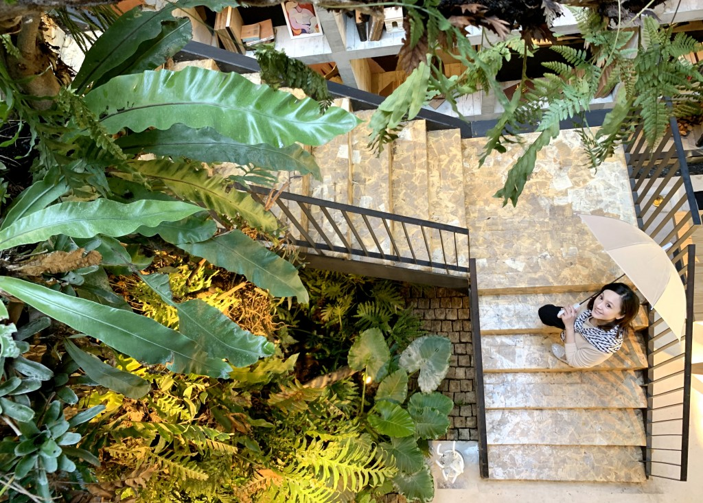 樂樂書屋透過植物創造人與自然的連結。