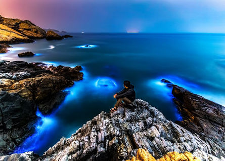 Activities to spot 'Blue Tears' in Matsu launched
