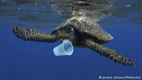 Say goodbye to plastic waste, says EU