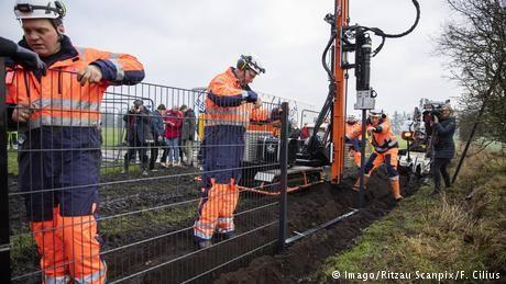 Denmark starts building anti-swine border fence