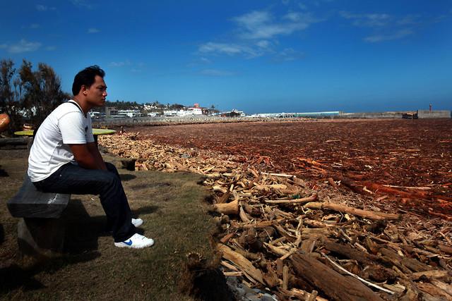 圖為八八風災後,富岡漁港旁邊的海岸,全都是從山上沖刷下的漂流木。這場颱風讓台灣付出極慘烈的代價,數百人還在生死之間,數千人流離失所,數百萬...