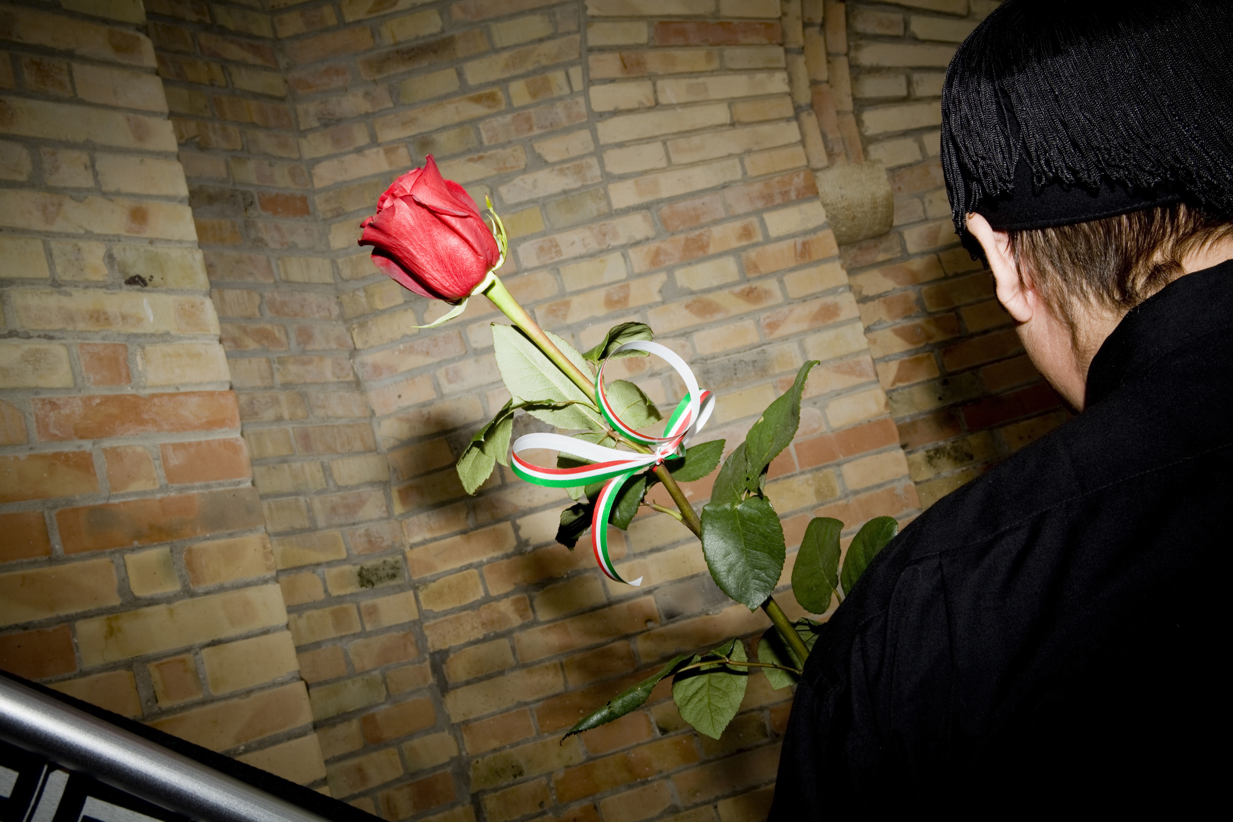 A visitor brings a rose to Benito Mussolini's tomb in Predappio, Italy, on Oct. 30, 2011. (The New York Times)