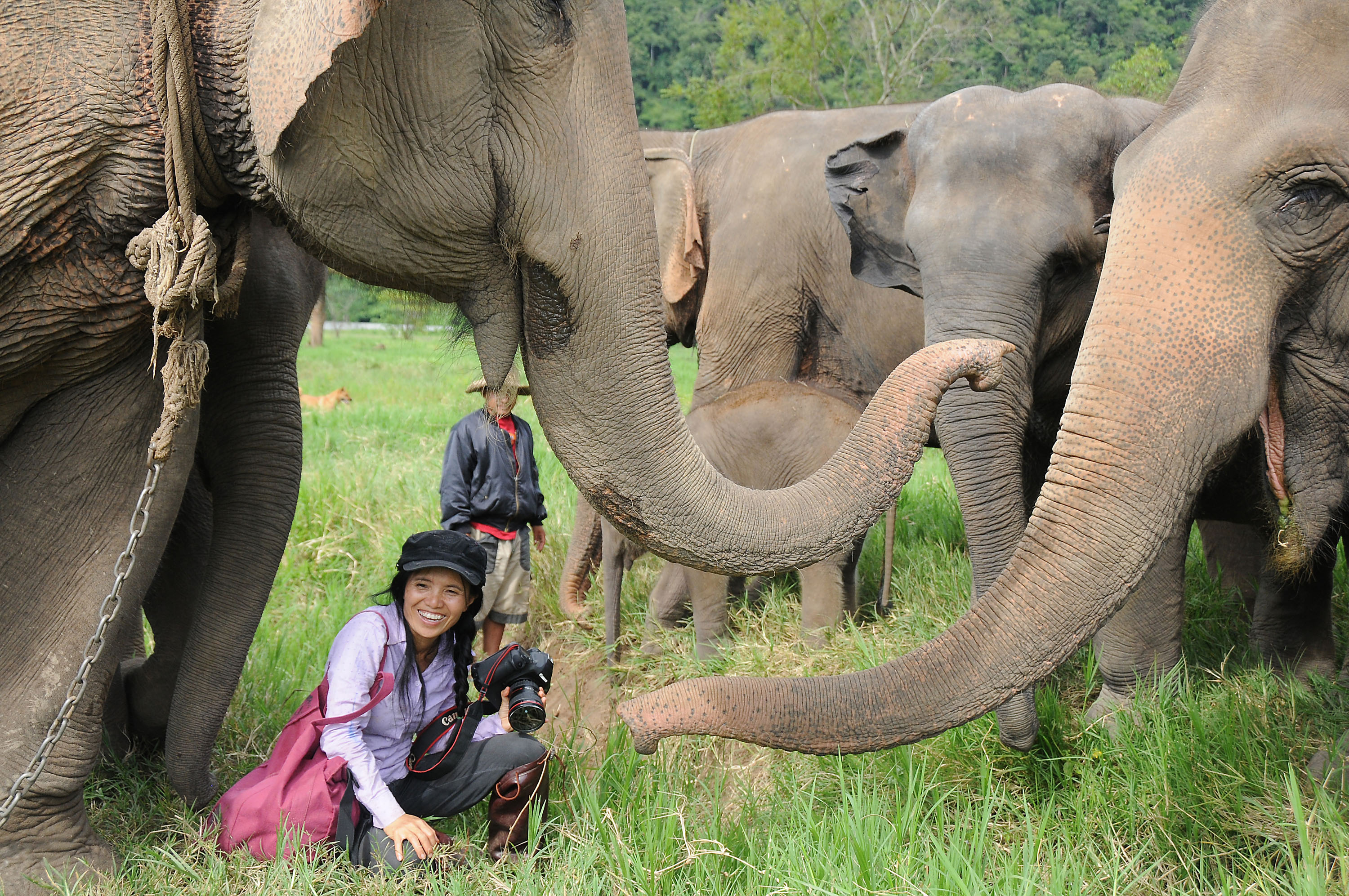 Sangduen Chailert, known as Lek, is surrounded by a herd of elephants she rescued at the Elephant Nature Park in Chiang Mai province, Thailand.