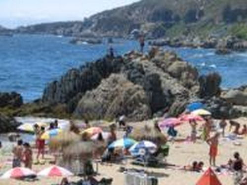 Vina del Mar ('Vineyard by the Sea') hugs the coast of central Chile. You see very few swimming at the beaches because the water, which streams up the...