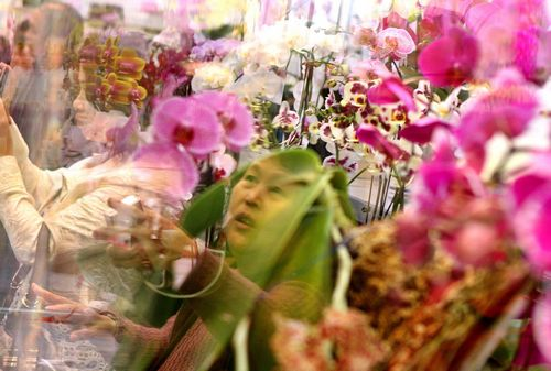 People attend the 2009 Taipei International Flower Exhibition, which is being held at the Taipei Arena until Sunday.