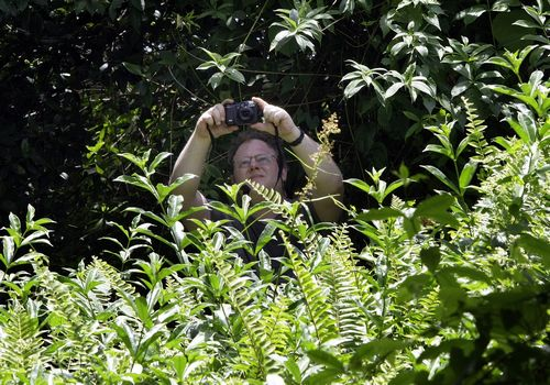 British entomologist George Beccaloni takes photos at the government rest house in Sarawak, Malaysia on March 24, a site for which British naturalist ...