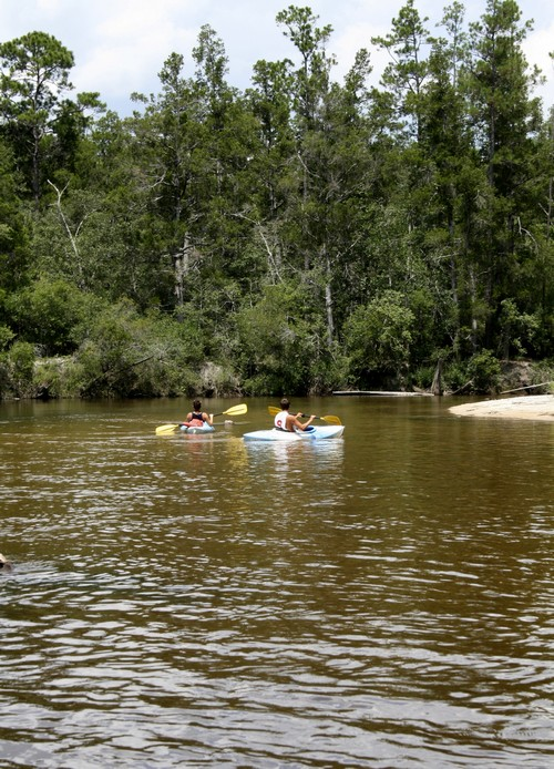 Canoes float along the waterway at Blackwater River State Park, one of the many state parks near Destin, Florida on July 24.