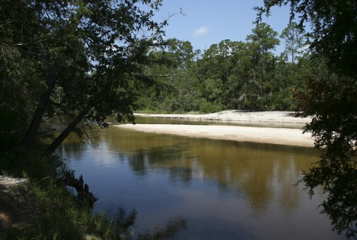 White sandy shores are common at Blackwater River State Park, one of the many state parks near Destin, Florida on July 24.