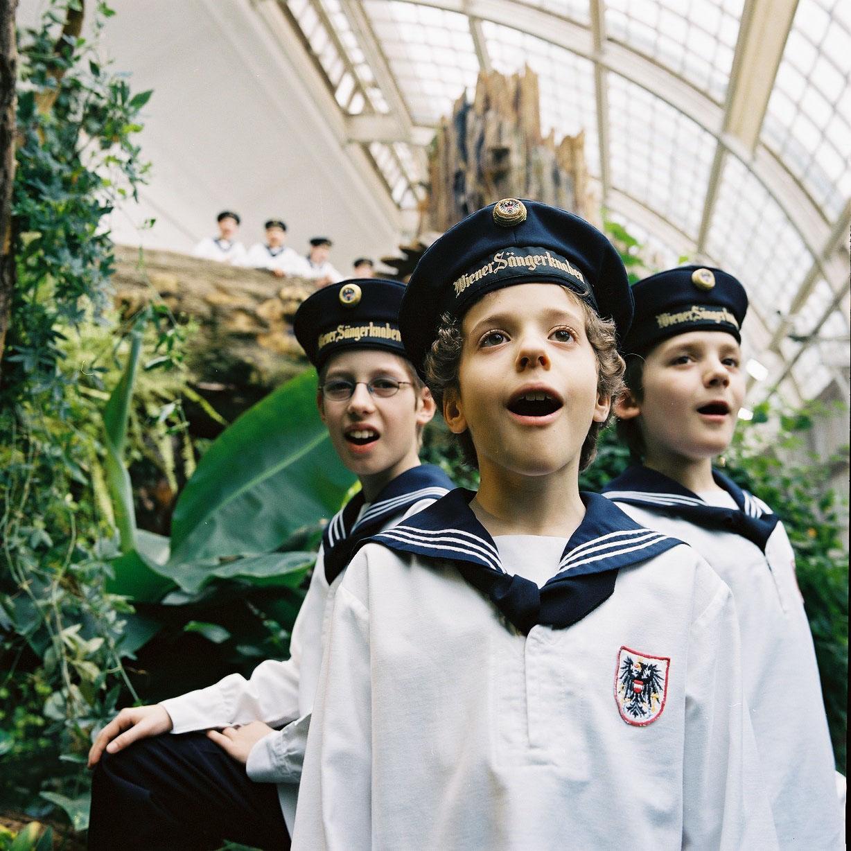 奧地利國寶-維也納少年合唱團來台開唱  豐國商銀財富管理冠名贊助