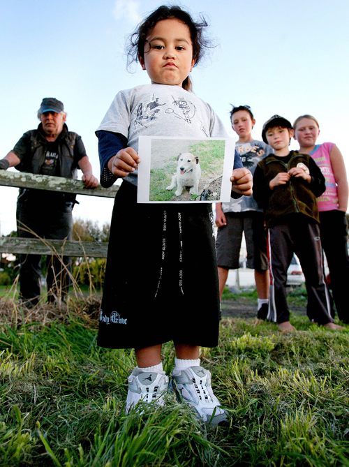 Four-year-old Darryl Wilson, front, holds a picture of George the dog in New Zealand yesterday.