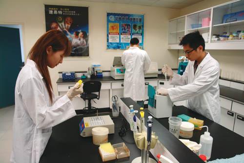 R&D Staff of Gene Target were inspecting Toona Sinensis (Juss.) Roem.
