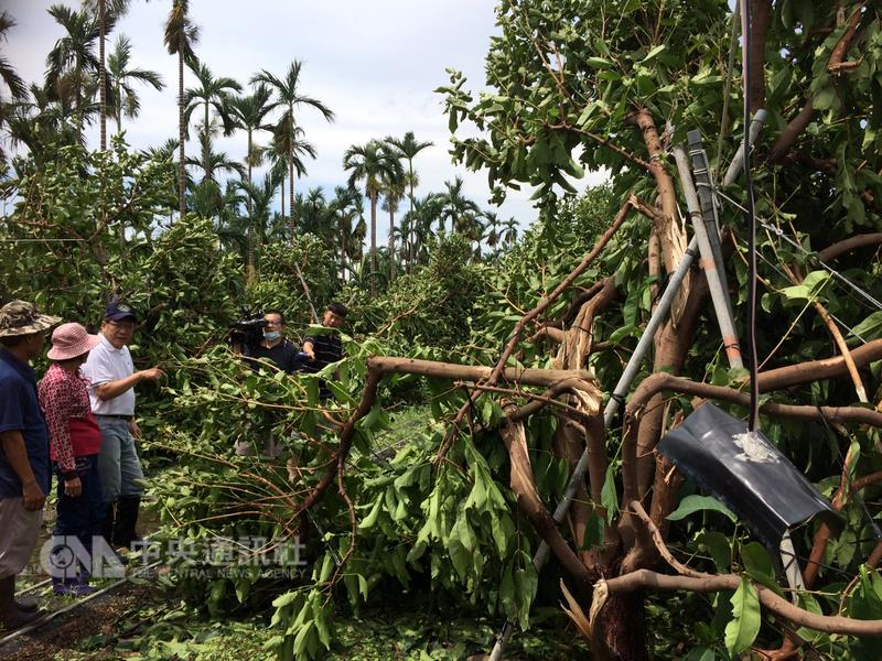 Farms heavily damaged by typhoon