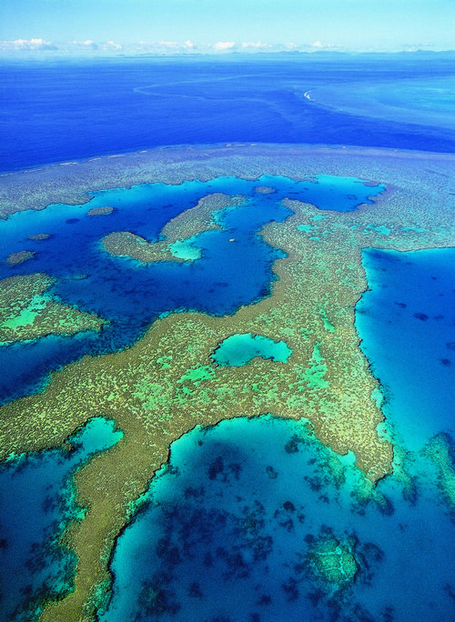 The Great Barrier Reef is the largest coral reef system in the world.