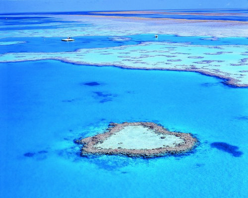 The heart-shaped reef is 10 minutes ride in a helicopter from Hamilton Island.