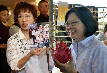 Tsai breezes over Hung in UDN opinion poll