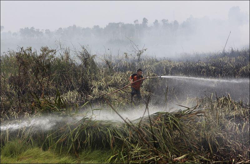 圖片顯示2015年,印尼一名救火員正在撲滅印尼南蘇門答臘的大火。