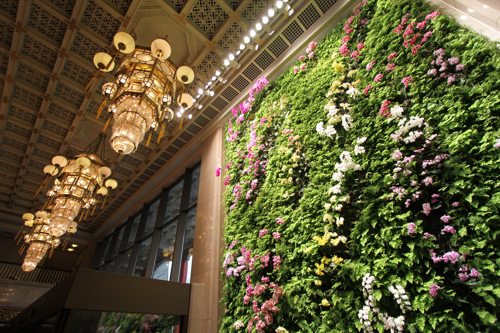 The vertical garden, Orchid Waltz, is erected by French botanist Mr. Patrick Blanc in the National Theater in December 2009 in Taipei.