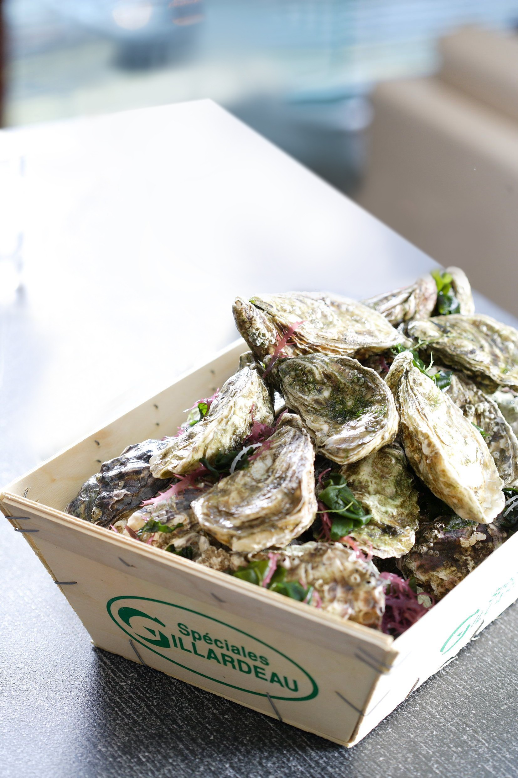 Regent launches oyster feast featuring premium oysters