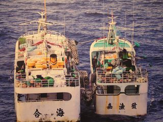 Japan: Fishery talks with Japan hoped to be held next year: MOFA