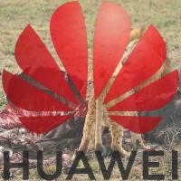 中國華為簽訂「無監控協議」 這招狠強 但是管用嗎?