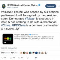Taiwan minister rejects Chinese media attempts to claim credit for same-sex marriage bill
