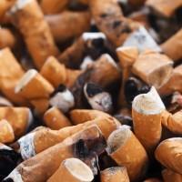 亂丟菸蒂不會汙染環境? 專家:會釋出重金屬及環境賀爾蒙