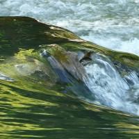 驚!全球河水採樣研究 抗生素含量驚人