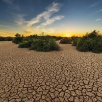 聯合國:勿拿納稅人的錢毀滅世界 籲各國停止補貼化石燃料