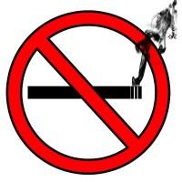 Taipei mulling ban on smoking around convenience stores, coffee shops