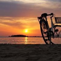 聯合國:自行車有助打擊空汙 降低高風險疾病