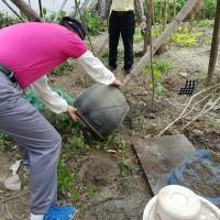 登革熱防治 環保署:環境髒亂導致病媒蚊蟲孳生者可罰6000元