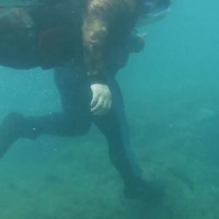 Snorkeler busted for stomping on endangered sea turtle in S. Taiwan